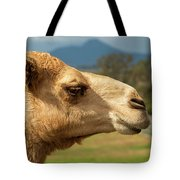 Camel Out Amongst Nature Tote Bag