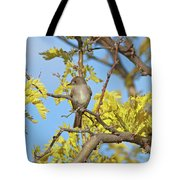 Willow Flycatcher Tote Bag