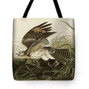 Winter Hawk  Tote Bag