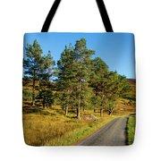 Glen Lyon Tote Bag