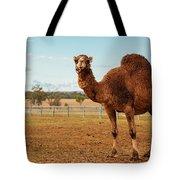 Large Beautiful Camel Tote Bag