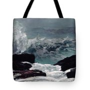 Maine Coast  Tote Bag
