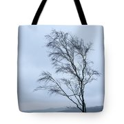 Moody Winter Landscape Image Of Skeletal Trees In Peak District  Tote Bag