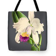 Orchid Old Print Tote Bag