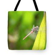 Small Beautiful Dragonfly Tote Bag