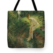 Bather In The Woods  Tote Bag