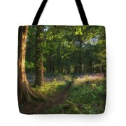 Stunning Bluebell Forest Landscape Image In Soft Sunlight In Spr Tote Bag