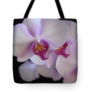 7195-orchids Tote Bag