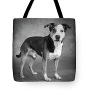 Portrait Of A Mixed Dog Tote Bag