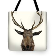 A Carved Wooden Red Deer Trophy With Red Deer Antlers, 19th Century Tote Bag