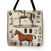 A Chromolithograph Of Horses With Antique Horseback Riding Equipments   1890  Tote Bag