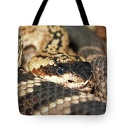 A Close Up Of A Mojave Rattlesnake Tote Bag