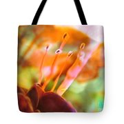 A Day Later Tote Bag
