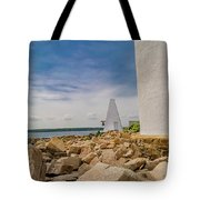 A Different View Goat Island  Tote Bag