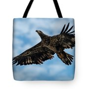 A Fly Over Tote Bag by Dan Friend