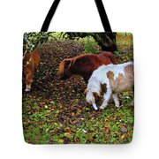 A Herd In 15 Feet Tote Bag