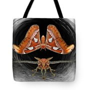 A Is For Atlas Moth Tote Bag
