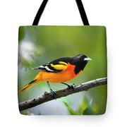 A Look To Remember Tote Bag