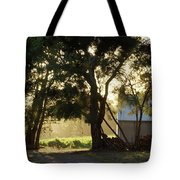 A New Day - Magpie Springs - Adelaide Hills Wine Region - South Australia Tote Bag
