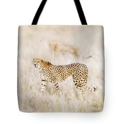 A Pair Of Cheetahs Move Steathily Through The Long Grass Of The  Tote Bag