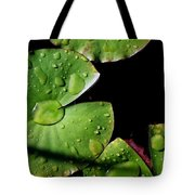 A Red Leaf Among The Water Lily Pads Tote Bag