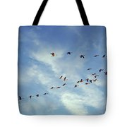 A Skein Of Canada Geese Tote Bag