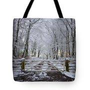 A Snowy Scene Tote Bag