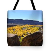 Gorgeous View Of Golden Cottonwood Trees In Canyon Tote Bag