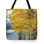 Abraham Lake Tote Bag