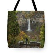 Admiring Taughannock Falls Tote Bag by Dan Sproul