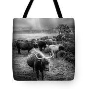 After The Rain On The Mountain In Black And White Tote Bag