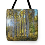 Afternoon Aspens Tote Bag