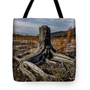 Age-old Stump Tote Bag