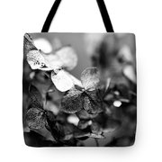Aged Perfection Tote Bag