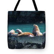 Alaska Steller Sea Lions Tote Bag