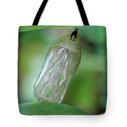 All Gone Tote Bag