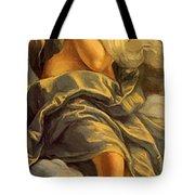 Allegoria Dell Inclinazione 1615 Tote Bag