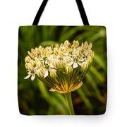 Allium Tote Bag by Keith Smith