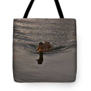 Swimming Dead Ahead Tote Bag