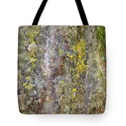 Along The Trail 3 Tote Bag