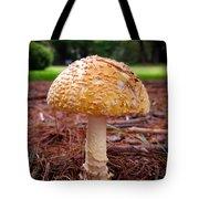 Amanita Fungus Tote Bag