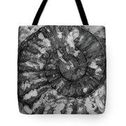 Ammonite Fossil Bw Tote Bag