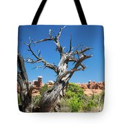 Ancient Dead Juniper With Character Tote Bag