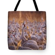 And One Sings Out Tote Bag