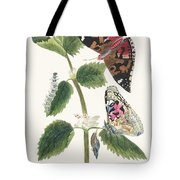 Antique Watercolor Illustration Of Nettle Butterfly In Various Life Stages Published In 1824 By M.p. Tote Bag