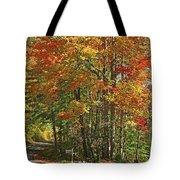 Appalachian Backroads Tote Bag