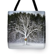Appleton Tree In Holiday Dress Tote Bag