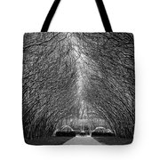 Arches Tote Bag by Dheeraj Mutha