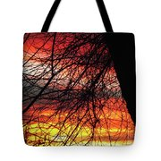 Arizona Sunset Through Branches Tote Bag