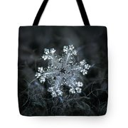 Real Snowflake - 26-dec-2018 - 1 Tote Bag by Alexey Kljatov
